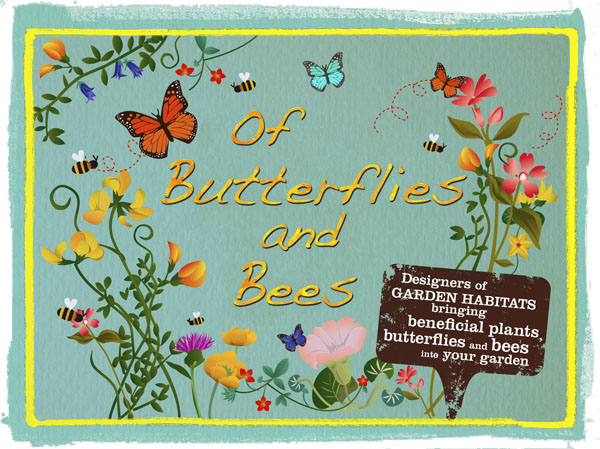 Of Butterflies and Bees postcard.